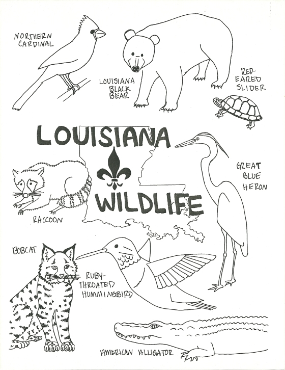 Louisiana Wildlife Coloring Page