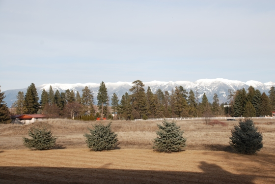 View of the Rockies from our condo.