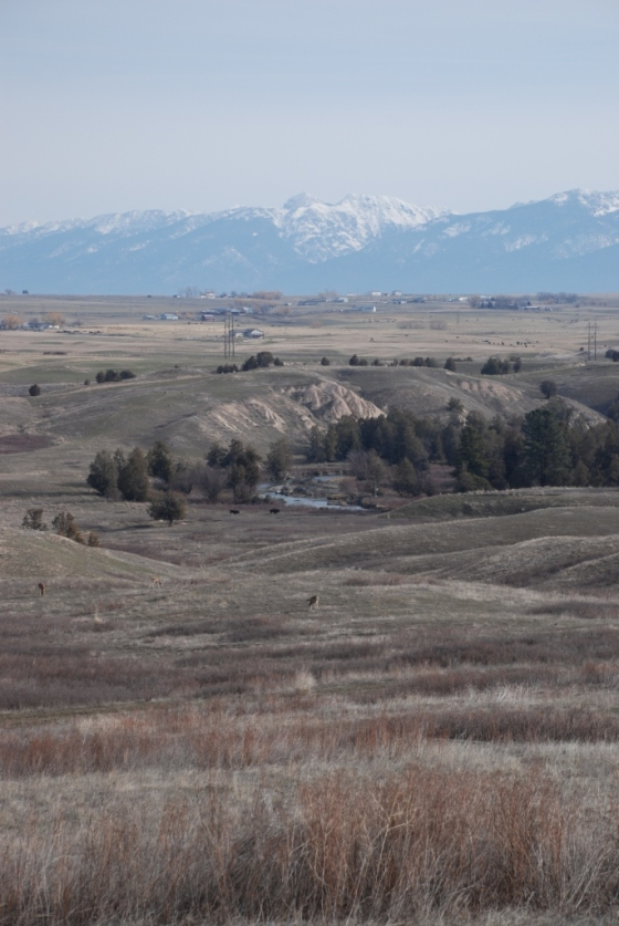 National Bison Range Views (2)