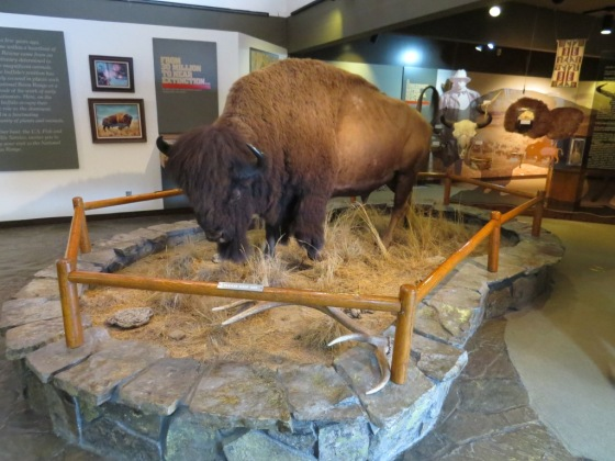 National Bison Range Visitor's Center (3)